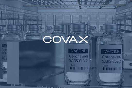 Covax posible vacuna donde Ecuador forma parte, anunció la OMS