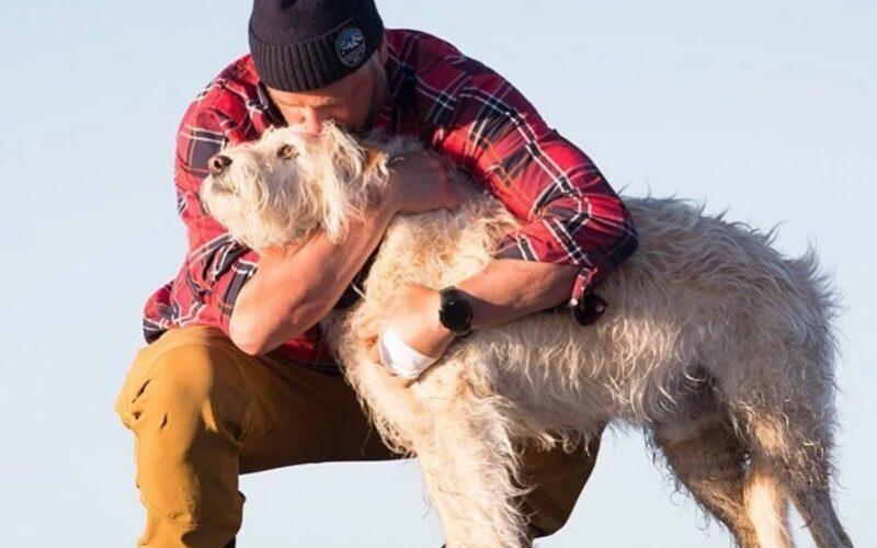 Adiós a Arthur: El perro aventurero ecuatoriano, que conmovió al mundo, falleció en Suecia